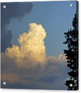 Puffy Cloud Acrylic Print