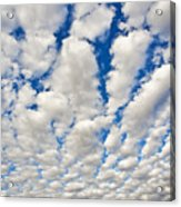 Puffy Clouds And Blue Sky Acrylic Print