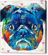 Pug Love Dog Art By Sharon Cummings Acrylic Print