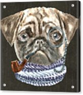 Pug Monacle Scarf Pipe Dogs In Clothes Acrylic Print