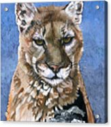 Puma - The Hunter Acrylic Print
