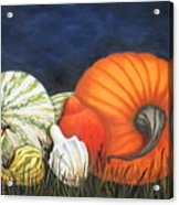 Pumpkin And Gourds Acrylic Print