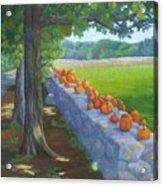 Pumpkin Muster Acrylic Print