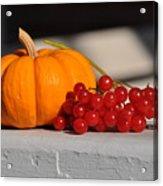 Pumpkin N Berries Acrylic Print
