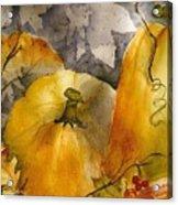 Pumpkin Patch Acrylic Print