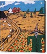 Pumpkin Patch Scarecrow Acrylic Print