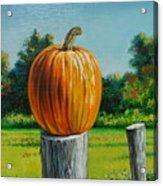Pumpkin Post Acrylic Print