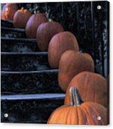 Pumpkins - Halloween Acrylic Print