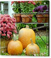 Pumpkins And Flowers Acrylic Print