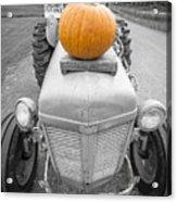 Pumpkins For Sale Vermont Acrylic Print