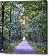 Pumpkinvine Trail In Fall Acrylic Print