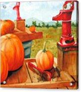 Pumps And Pumpkins Acrylic Print