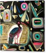 Puna Ibis Acrylic Print