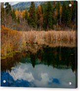Purcells Reflected Acrylic Print