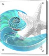 Pure Joy - Starfish With Nautilus Shell Acrylic Print