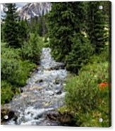 Pure Rocky Mtn. Spring Water Acrylic Print