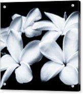 Pure White Large Canvas Art, Canvas Print, Large Art, Large Wall Decor, Home Decor, Photography Acrylic Print