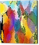 Pure Wonder Acrylic Print