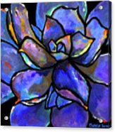 Purple Agave Acrylic Print