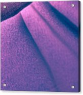 Purple And Bold Acrylic Print