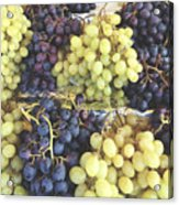 Purple And Green Grapes Acrylic Print