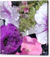 Purple And Pink Petunias Oil Painting Acrylic Print