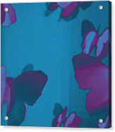 Purple And Turquoise Butterflies Acrylic Print