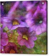 Purple And Yellow Morning 9121 Idp_2 Acrylic Print