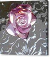 Purple Blossom Acrylic Print