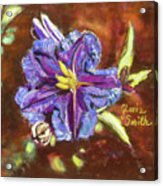 Purple Cactus Flower Acrylic Print