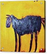 Purple Desert Donkey Acrylic Print