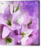 Purple Dreams Acrylic Print