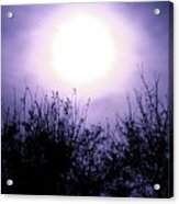 Purple Eclipse Acrylic Print