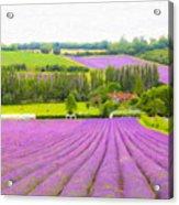 Purple Fields Of Love Acrylic Print