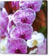 Purple Flower Acrylic Print