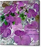 Purple Flower Wishes Acrylic Print
