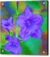 Purple Flowers 102310 Acrylic Print