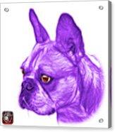 Purple French Bulldog Pop Art - 0755 Wb Acrylic Print