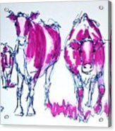 Purple Friesian Holstein Cows Drawing Acrylic Print