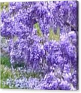 Purple Impression  Acrylic Print