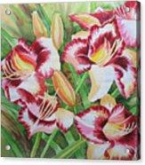 Purple Lilies.2007 Acrylic Print
