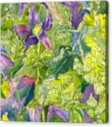 Purple Lillies And Baby's Breath Acrylic Print