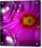 Purple Magic Acrylic Print