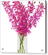 Purple Orchid In Vase Acrylic Print