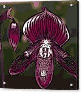 Purple Orchid Woodcut Acrylic Print