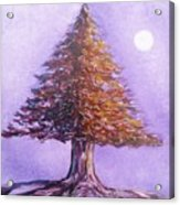 Purple Pine  Acrylic Print