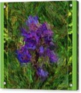Purple Png Flower Acrylic Print
