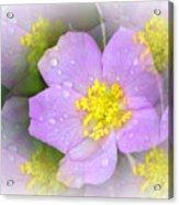 Purple Prism Acrylic Print