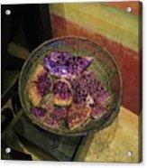 Purple Rocks Acrylic Print