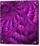 Purple Shell Acrylic Print